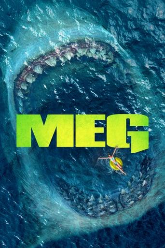 Meg TS LD German x264-PsO