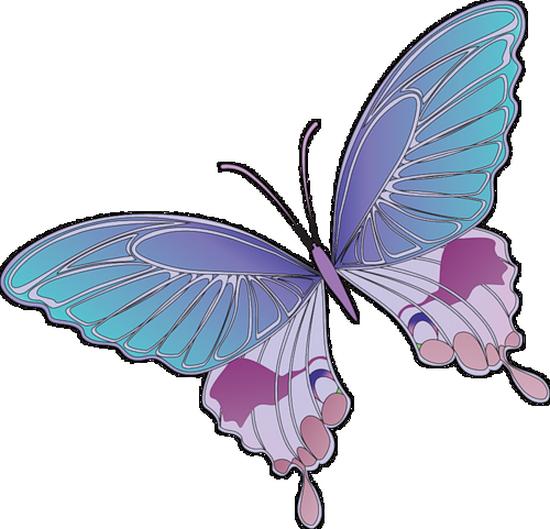 tubes_papillon_tiram_219