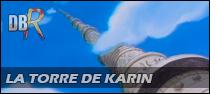 La torre de Karin