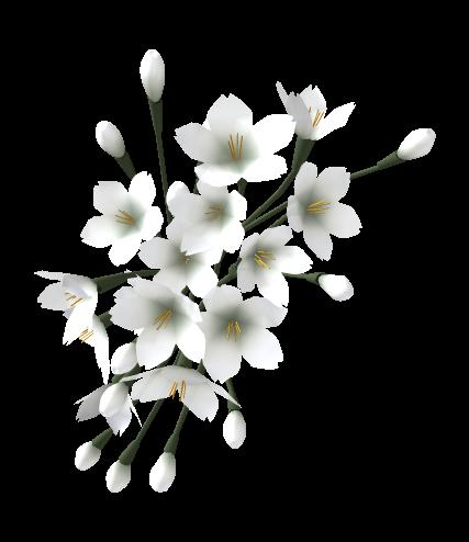 tubes_fleurs_tiram_697