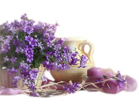 tubes_fleurs_tiram_808