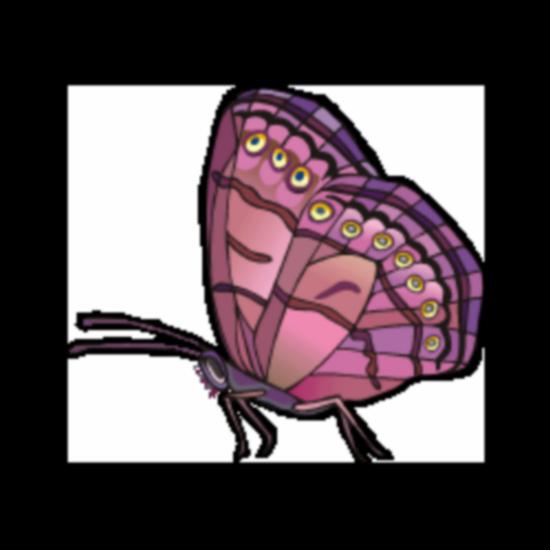 tubes_papillon_tiram_724