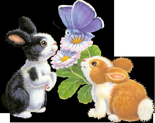 lapins_paques_tiram_426