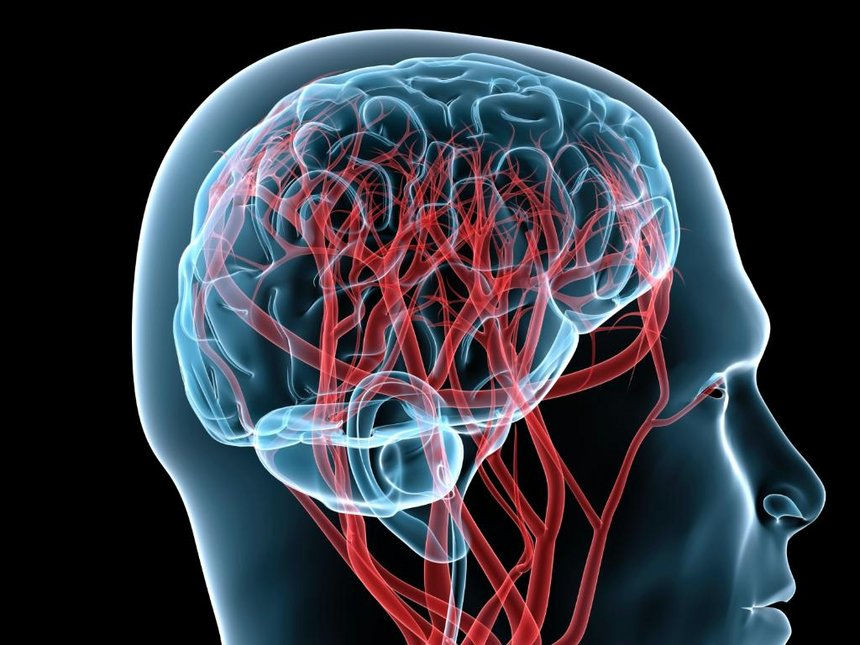 10 Traps of Our Brain