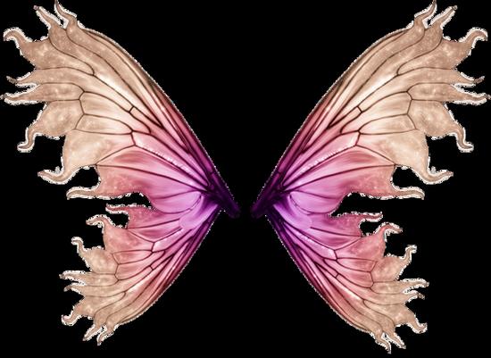 tubes_papillon_tiram_672