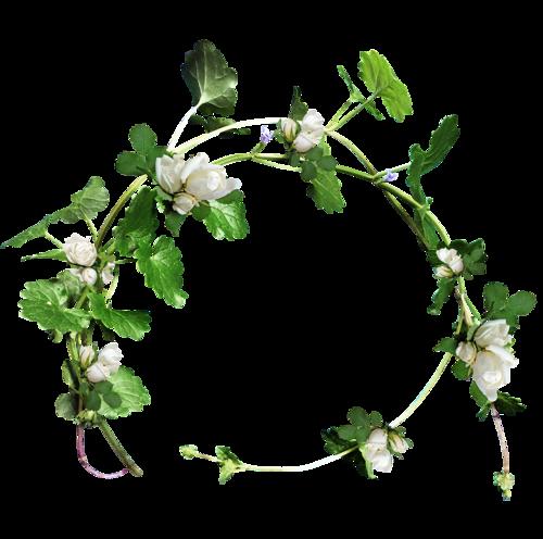 fleurs_paques_tiram_5