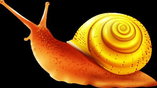 tubes_escargots_tiram_102