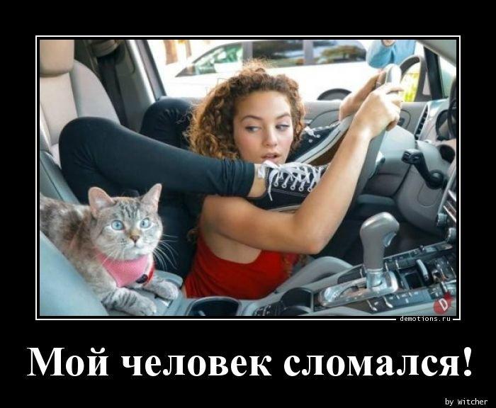 1533480519_moy_chelovek_slomals_demotions_ru