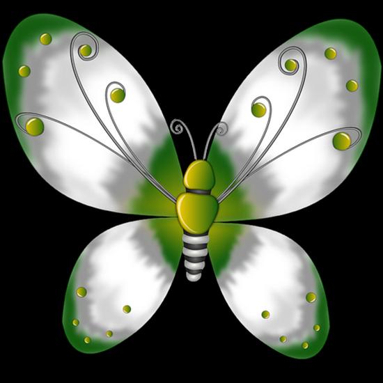 tubes_papillon_tiram_185