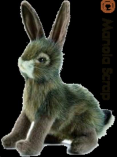 lapins_paques_tiram_1048