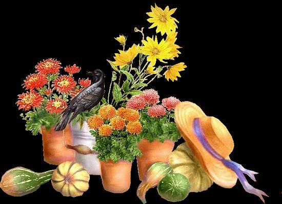 tubes_fleurs_tiram_328