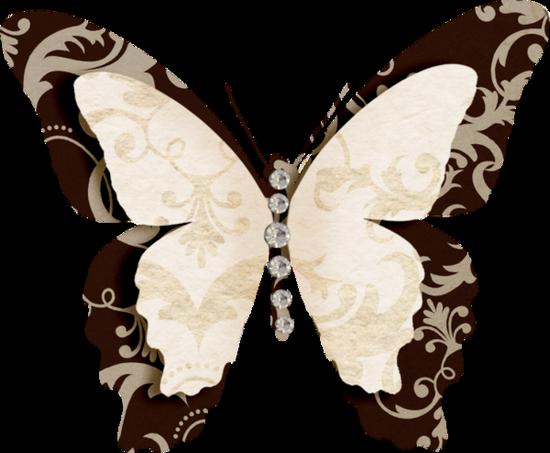 tubes_papillon_tiram_318