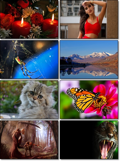Wallpapers HD Beautiful Pack 1137