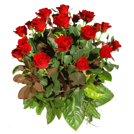 tubes_fleurs_tiram_704