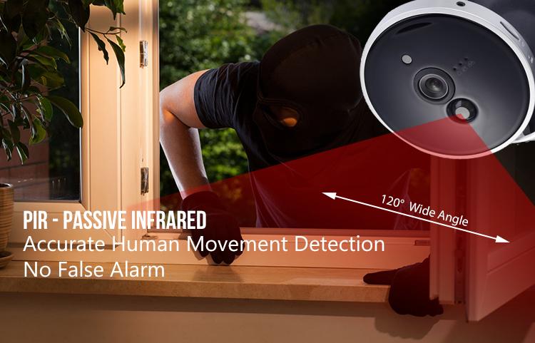 Passive Infrared Human Detection No False Alarm
