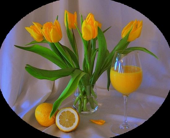 tubes_fleurs_tiram_432
