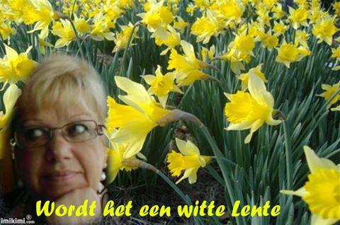 witte_lente