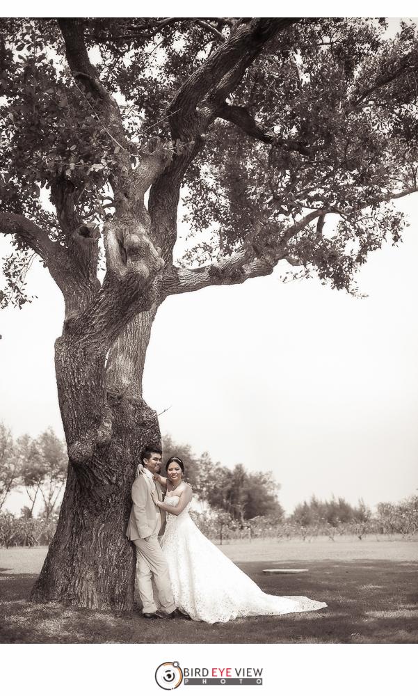 pre_wedding_015
