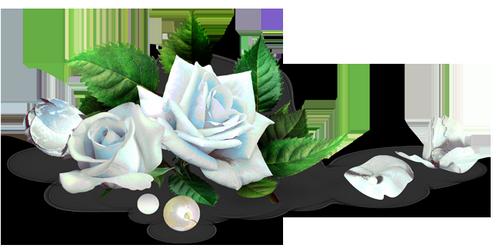 tubes_fleurs_tiram_565