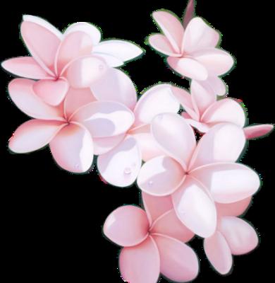 tubes_fleurs_tiram_719