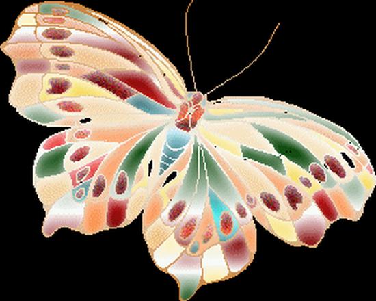 tubes_papillon_tiram_561