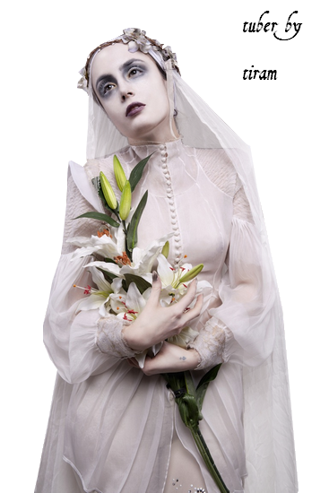lady_baroque_tiram_144