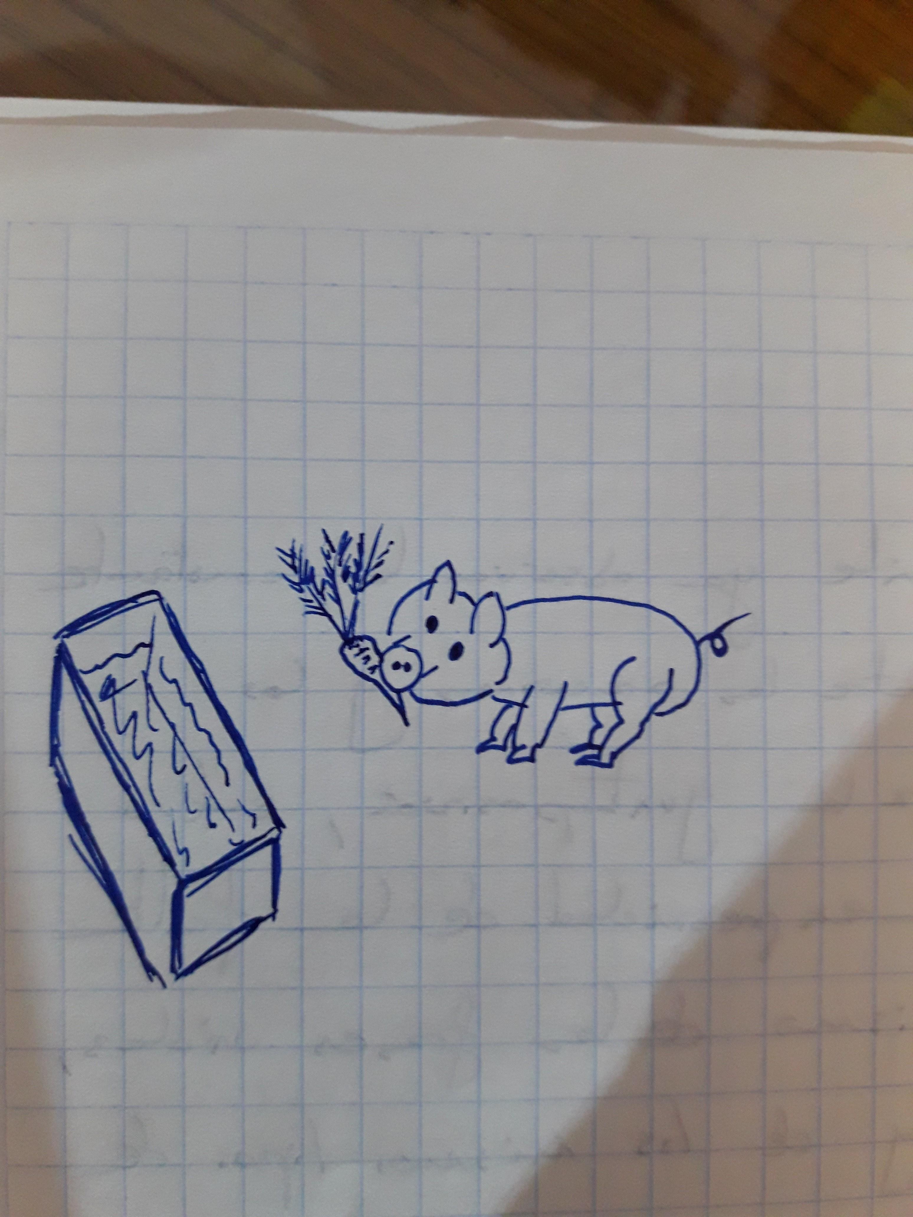 Test del cerdo  20180201_021350