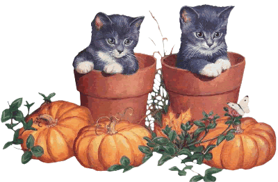animaux_alloween_tiram_273