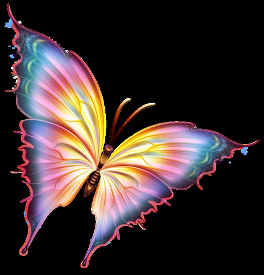 tubes_papillon_tiram_223