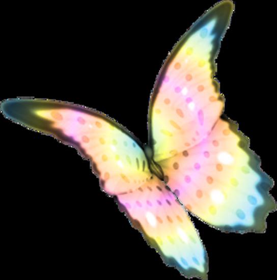 tubes_papillon_tiram_836