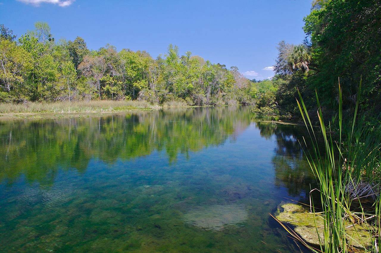 Ocala National Park
