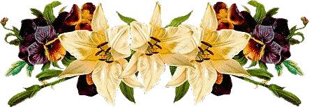 tubes_fleurs_tiram_836