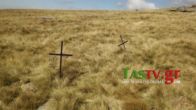 TASNOE0013954_COPY