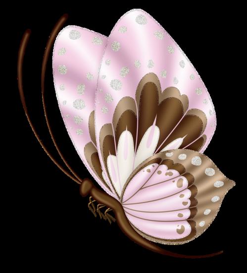 tubes_papillon_tiram_105