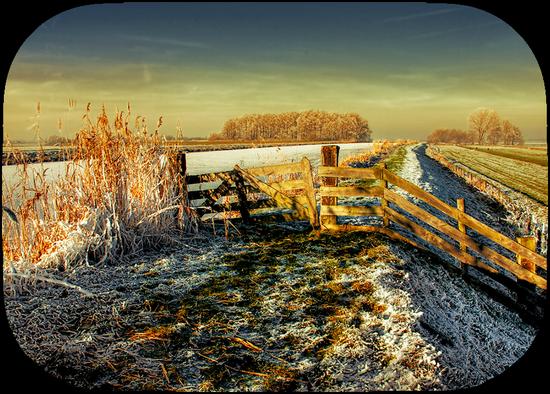 paysage_tiram_851