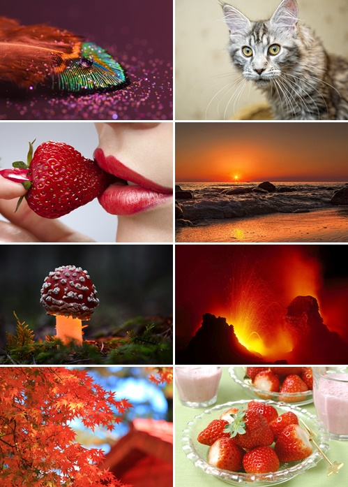Best Mix HD Wallpapers Pack 36