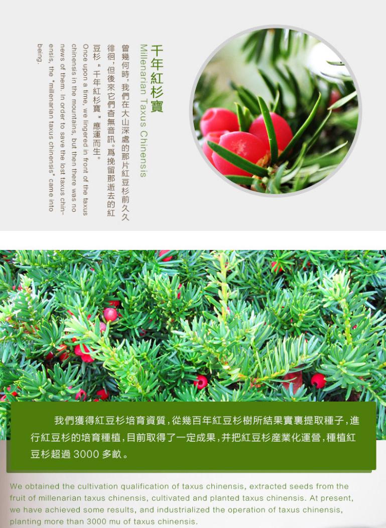 100g_2_Millenarian_Taxus_Chinensis_Nourishing_Soap_Page_03_Image_0001