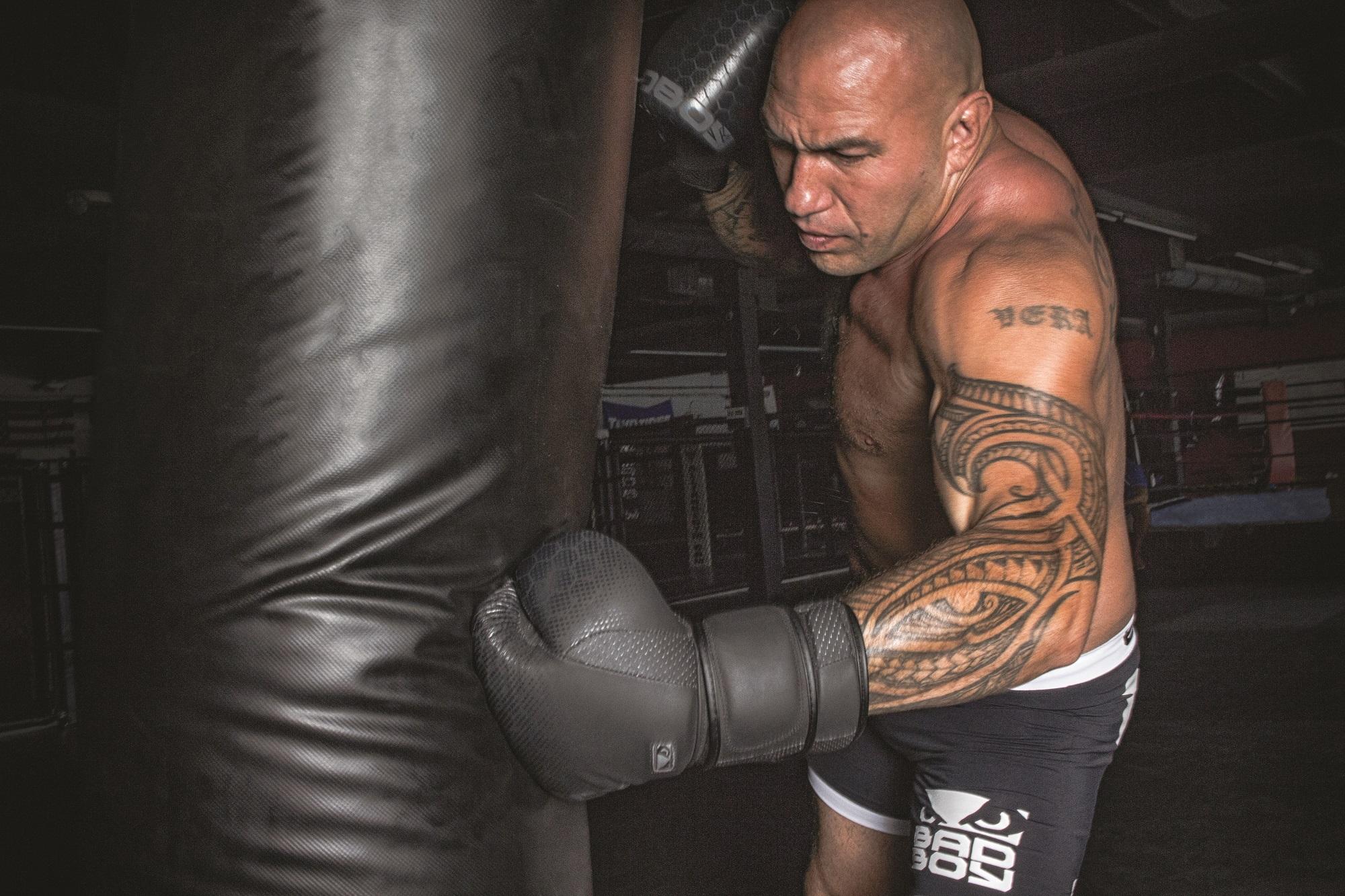 Оригинальные Боксерские перчатки BAD BOY LEGACY 2.0 - КОЖА ( бренд США )