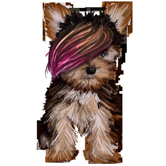 chien_tiram_81