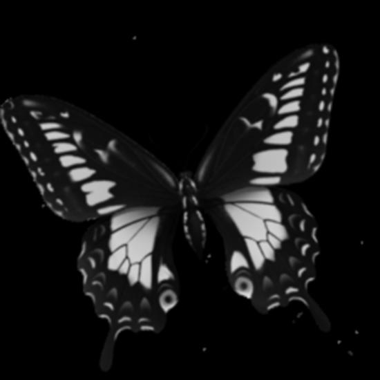 tubes_papillon_tiram_282
