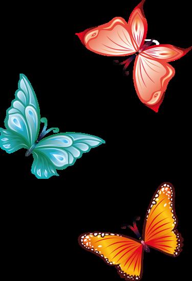tubes_papillon_tiram_175
