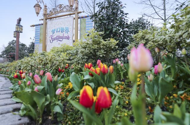 Shanghai Disneyland (2016) - Le Parc en général - Page 39 SDL6
