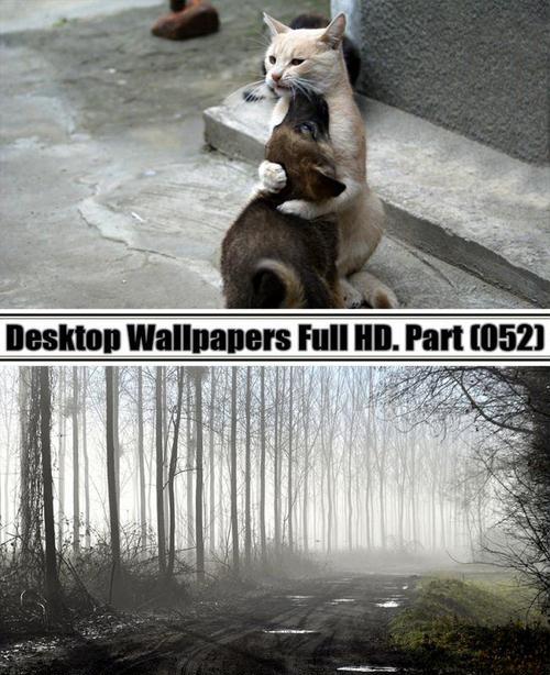 Desktop Wallpapers Full HD Part (52)