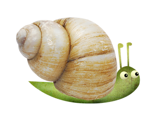 tubes_escargots_tiram_164