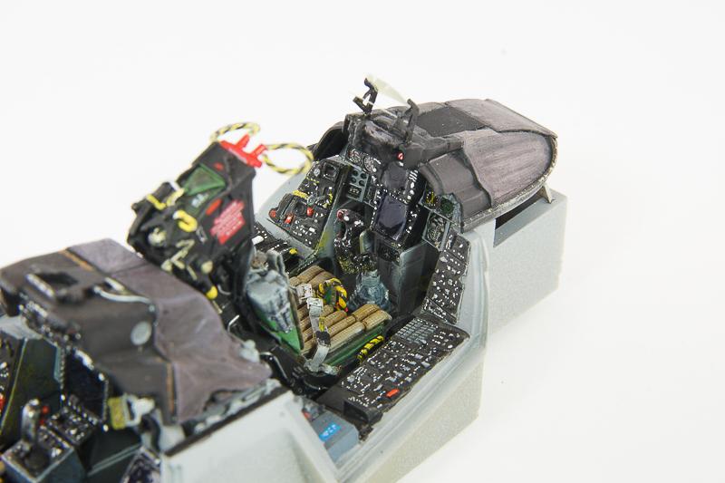 F14blsp_11.jpg