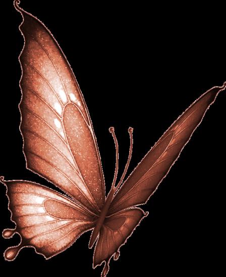 tubes_papillon_tiram_654