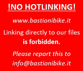 Bastioni Bike