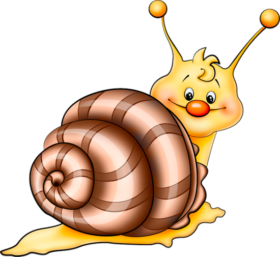 tubes_escargots_tiram_56