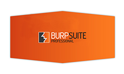 Learn Burp Suite for Web Application Security Assessment