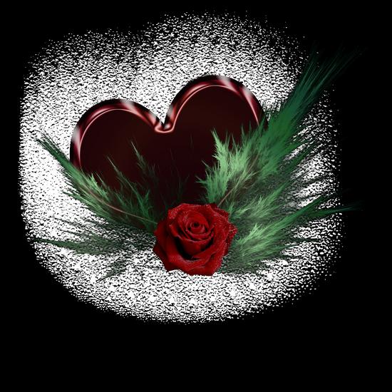 coeur_saint_valentin_tiram_50